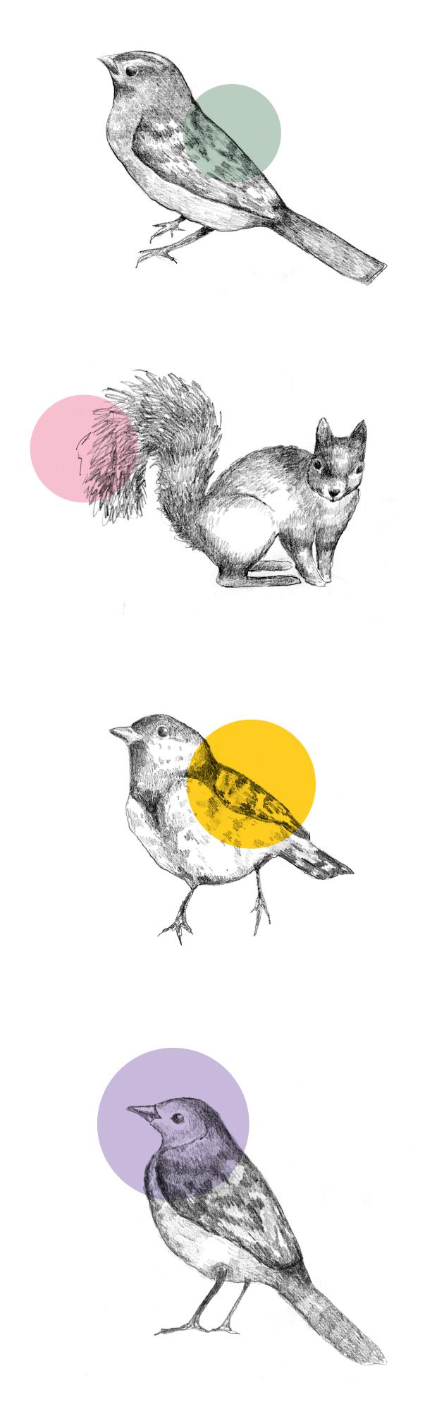 illustration, blyerts, mint, anna nilsson, annagrafisk form, malmö